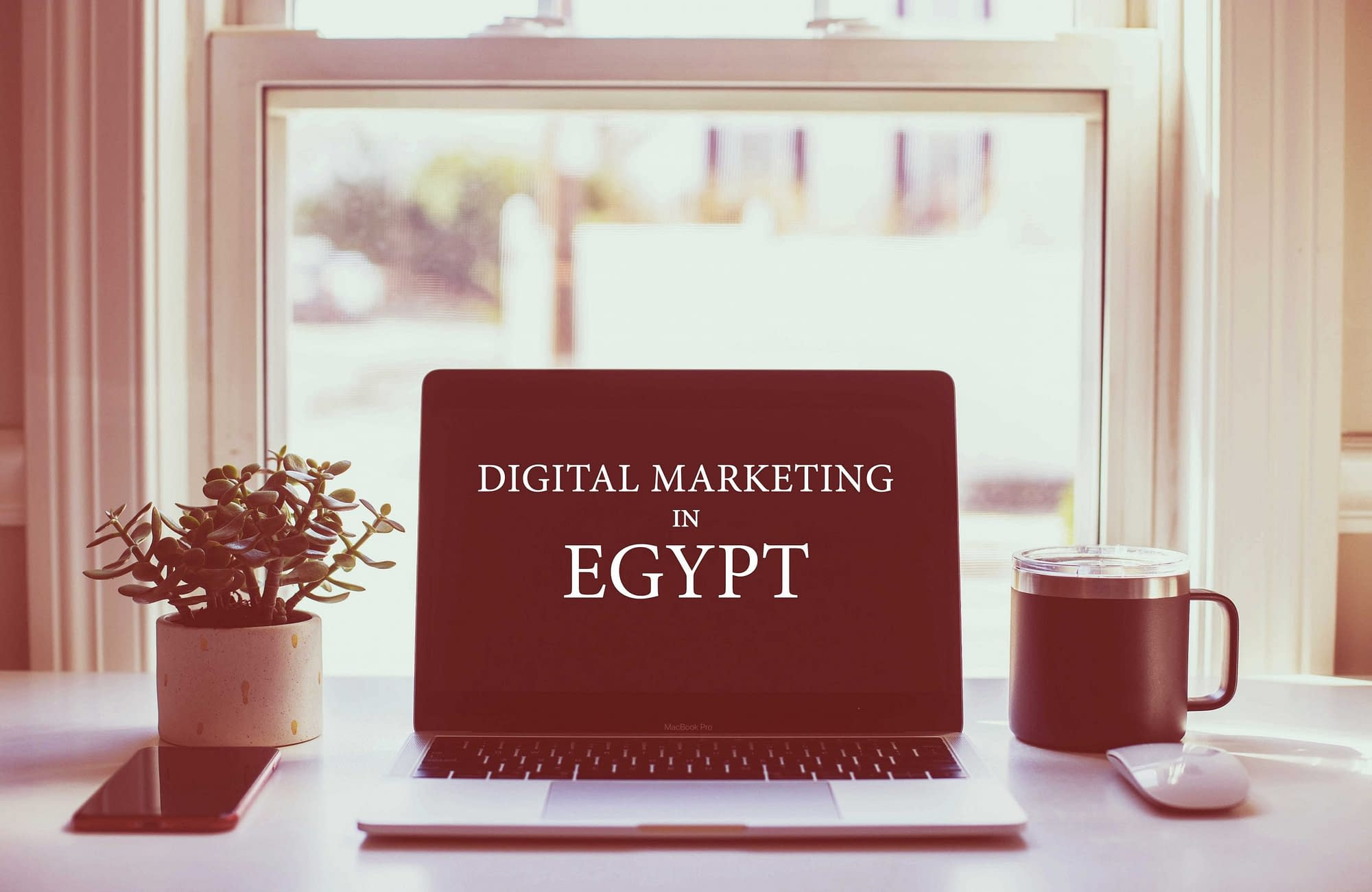 digital marketing in egypt